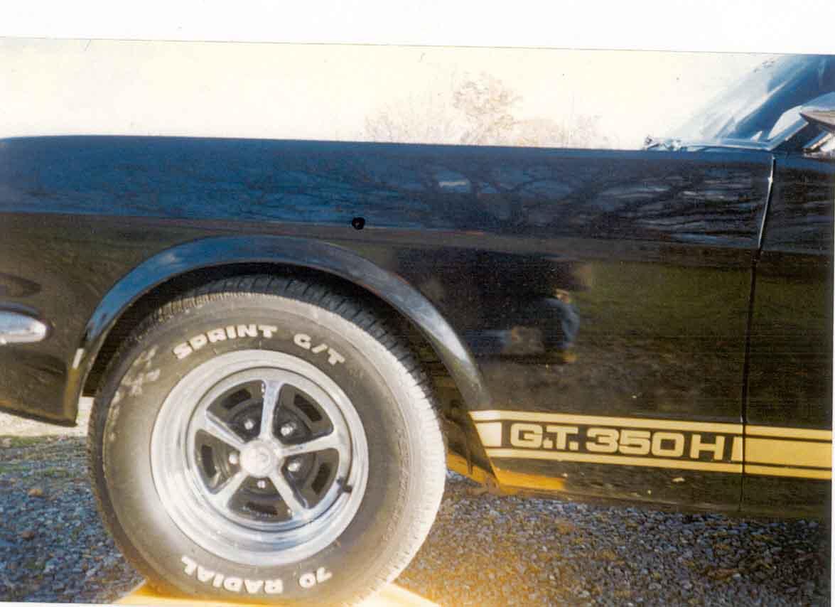 1966 Shelby Info